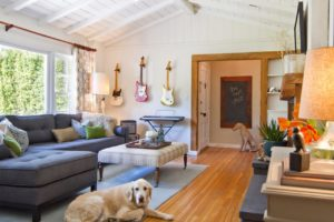 How to safely decorate your home when you have pets